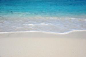 waves free ditial- porbital